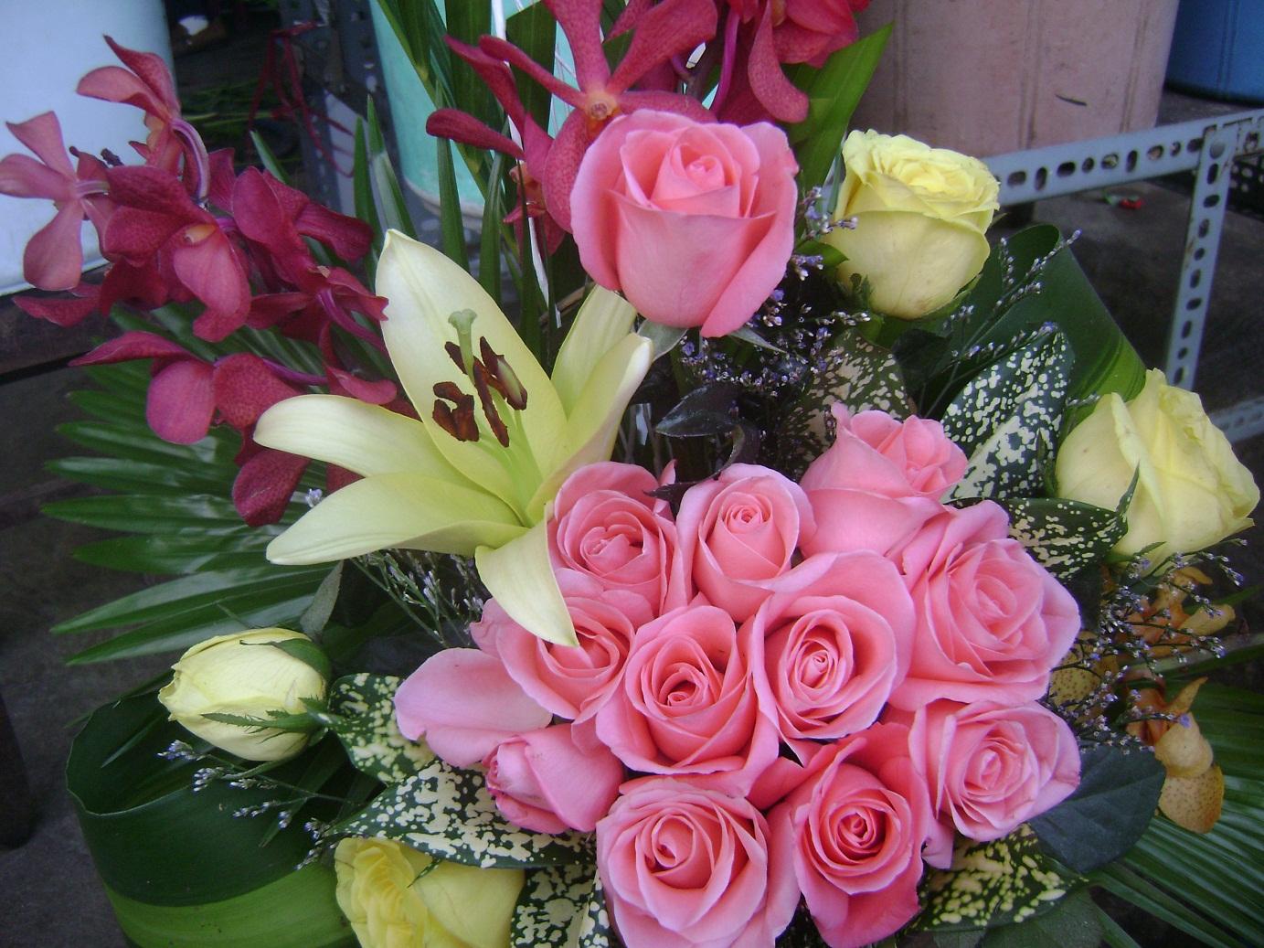 hinh nen hoa