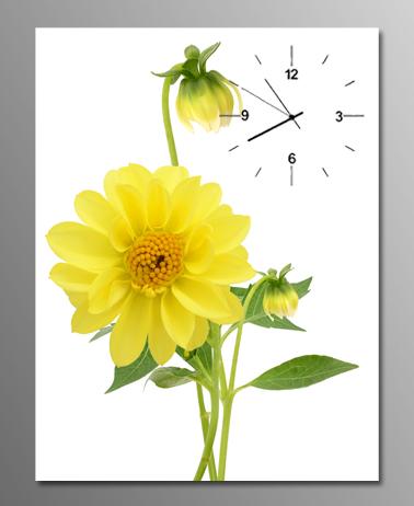 anh tranh dong ho chum hoa cuc