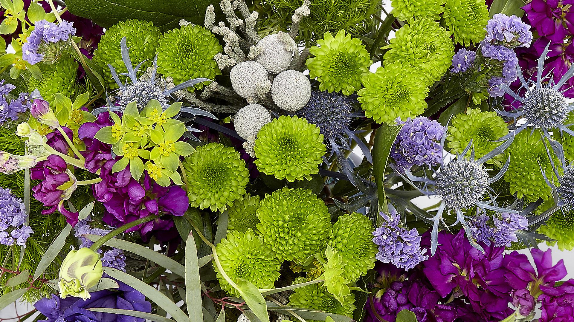 Hình nền hoa tuyệt đẹp