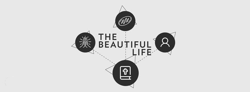 Ảnh bìa The beautyful life